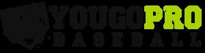 YouGoProBaseballLogo